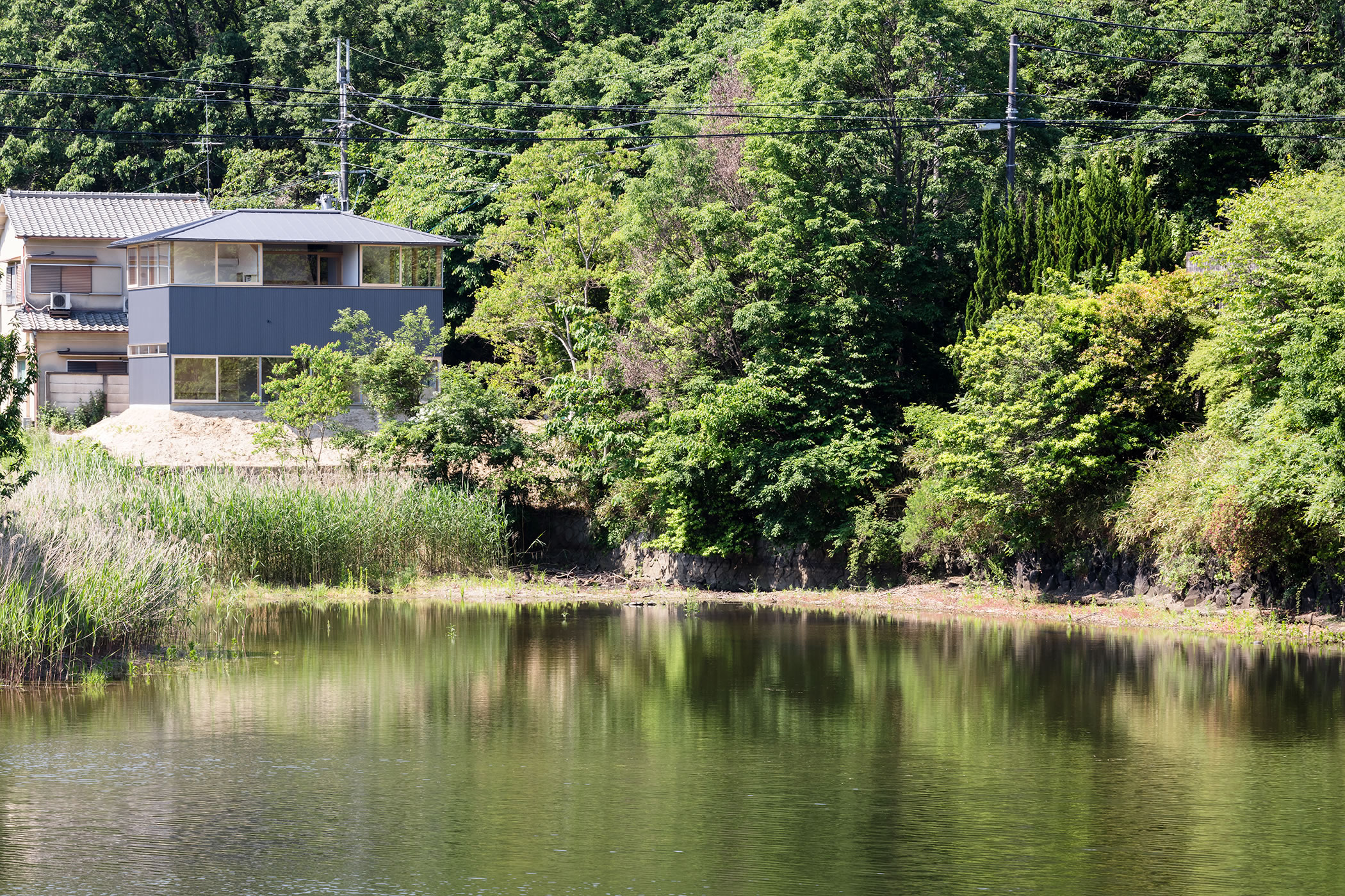 蛙股池の家